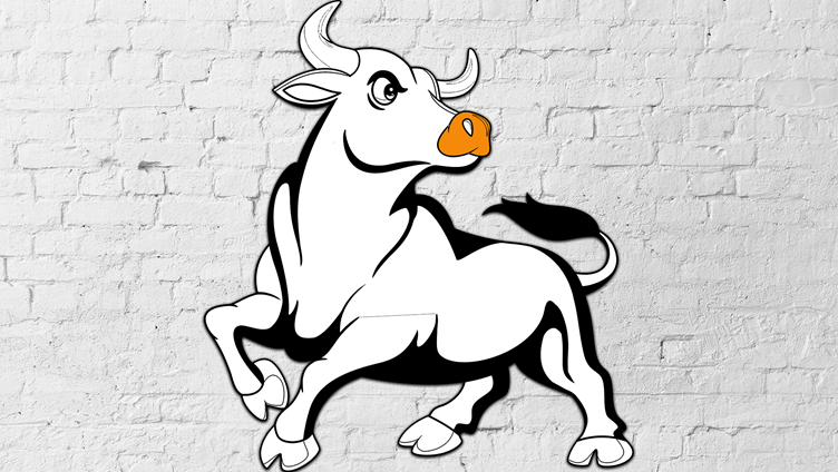Innovation in Insurance: How to Tame the Bull